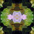 Green Peony Extreme by Lynda Lehmann