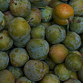 Green Plums Fill A Bin Outside A Local by Heather Perry