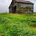 Grey County Barn by Cale Best