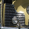 Grille by Renata Mayes