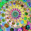 Groovy by Sharon Lisa Clarke