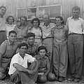 Group Of Jewish Immigrants Harvesting by Everett
