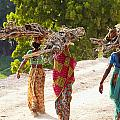 Group Of Women Carrying Firewood Near by Axiom Photographic