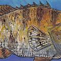 Grouper by Edward Walsh