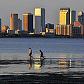 Growing Up Tampa Bay by David Lee Thompson