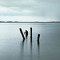 Groyne Posts by Andy Linden