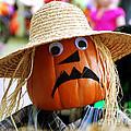 Grumpy Pumpkin by Monica Poole