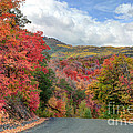 Guardsman Pass To Midway In The Fall - Utah by Gary Whitton