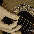 Guitar Picking Sepia by Michael Waters