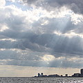 Gulf Of Mexico - Gulf Sunshine by Travis Truelove