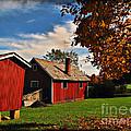 Hale Farm In Autumn by Joan  Minchak