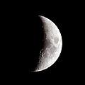 Half Moon by Athena Mckinzie
