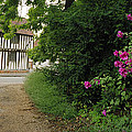 Half-timered House Lavenham by Jan W Faul