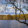 Hall Lake In Autumn No 0118 by Randall Nyhof