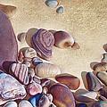 Hallett Cove's Stones by Elena Kolotusha