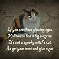Halloween Calico Cat And Poem Greeting Card by Mother Nature