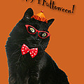 Halloween Card - Black Cat Ready To Party by Mother Nature