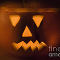 Halloween Pumpkin by Alex Rowbotham