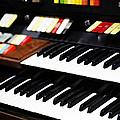 Hammond Electric Organ by Marilyn Hunt
