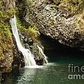 Hana Waterfall by Scott Pellegrin