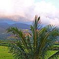 Hanalei Panorama Kauai by Kevin Smith