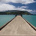 Hanalei Pier by Roger Mullenhour