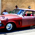 Hanging With My Buddy . 1953 Studebaker .  5d16513 by Wingsdomain Art and Photography