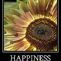 Happiness Peach Sunflower by P S