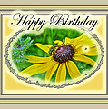 Happy Birthday Card    Black-eyed Susan And Bee by Mother Nature