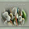 Happy Easter Greeting Card - Pussywillows by Mother Nature