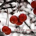 Happy Holidays Berries by Laura Kinker