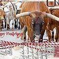 Happy Holidays by Toni Hopper