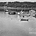 Harbor In Black And White by Traci Cottingham