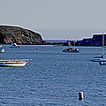 Harbor On The California Coast by Mick Anderson