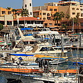 Harbor Waterfront In Cabo San Lucas by Roupen  Baker