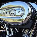 Harley Chrome by Christean Ramage