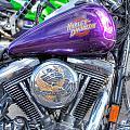 Harley Davidson 3 by Steve Purnell