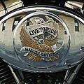 Harley Davidson Bike - Chrome Parts 44c by Aimelle