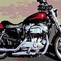 Harley Davidson by George Pedro