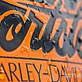 Harley Davidson Logo by Stelios Kleanthous