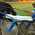 Harness Racing 12 by Bob Christopher