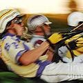 Harness Racing 13 by Bob Christopher