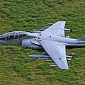 Harrier Low Level by Ken Brannen