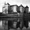 Hartenfels Castle by Falko Follert
