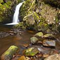 Harthope Linn, Harthope Valley, Northumberland National Park, Northumberland, England by Jason Friend