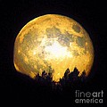 Harvest Moon 2012 by Paul Baker