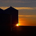 Harvest Sunrise by Blair Wainman