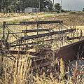 Harvester Sweep Wheel 1 by Douglas Barnett