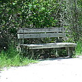 Have A Seat by Zack Mann