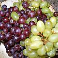 Have Some Grapes by Merton Allen